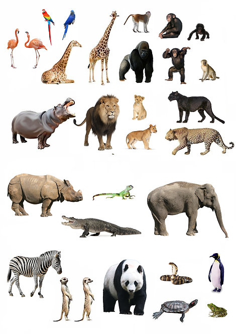 30 Stand Up Edible Wafer Paper Zoo Animal Toppers