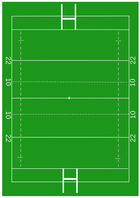 1 x A4 Rugby Pitch Wallpaper Decor Icing Sheet