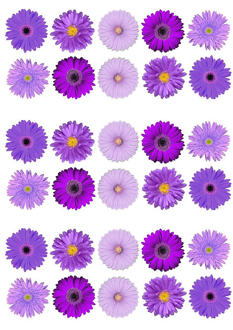 30 Purple Gerbera Flower Toppers Edible Thin Wafer Paper