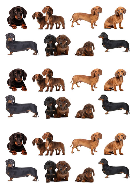 24 Stand Up Edible Wafer Paper Cute Sausage Dogs Dachshund Cake Toppers