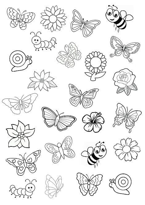 Cute Butterfly and Flowers Colouring Pack Edible Wafer & 10 Foodoodler Pens