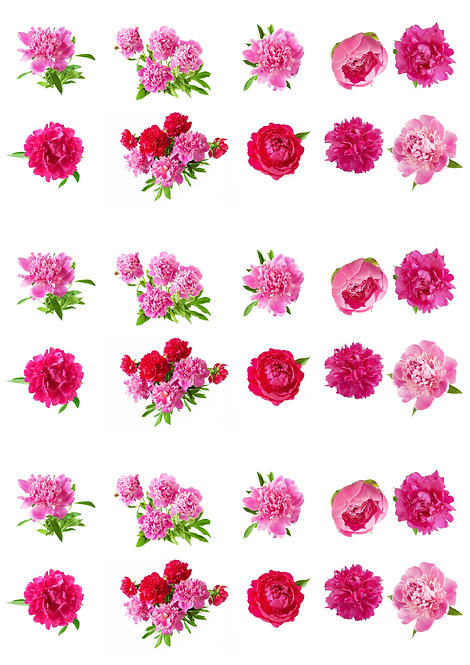 30 Pink Peonies Flower Cake Toppers Edible Thin Wafer Paper