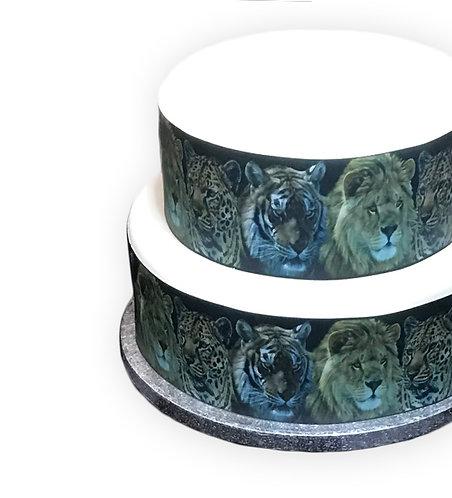 Big Cats Lion Tiger Leopard Border Decor Icing Sheet
