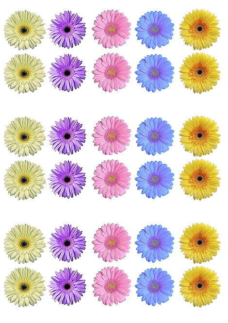 30 Pale Pastel Gerbera Flower Toppers Edible Thin Wafer Paper