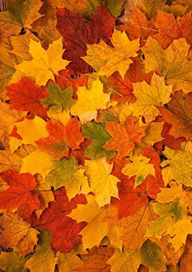 Autumn Leaves Wallpaper Decor Icing Sheet