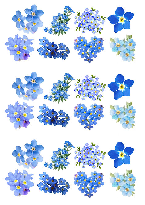 24 Blue Forget Me Not Flower Cake Toppers Edible Thin Wafer Paper