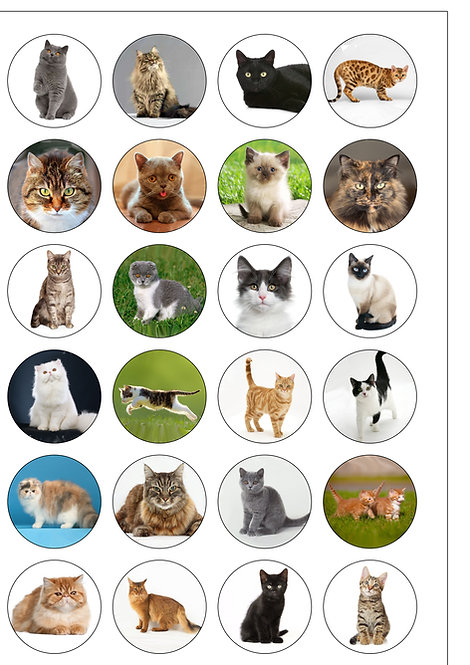 24 Cats and Kittens Pre-Cut Thin Edible Wafer Paper
