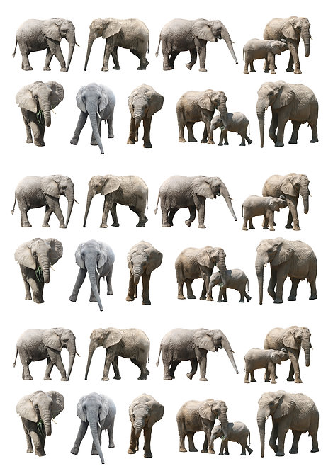 27 Stand Up Edible Wafer Paper Elephant Animal Zoo themed Cake Toppers