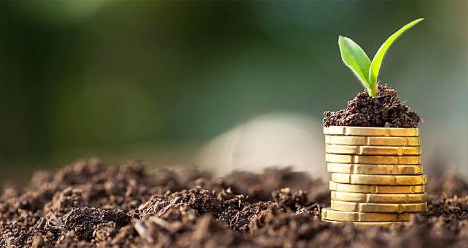 4 Passos para Construir a Sua Independência Financeira