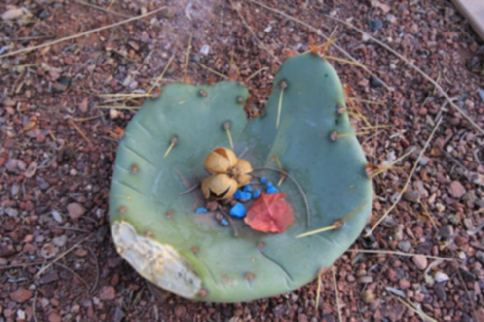 susan blue pebbles.jpg