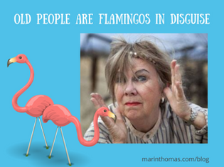 Old People are Flamingos in Disguise | Pink Flamingo Flamingle