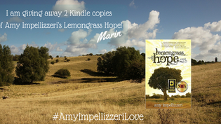 Amy Impellizzeri Book Giveaway from Marin Thomas #AmyImpellizzeriLove #CountdownToPromise