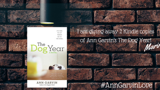 Ann Garvin Book Giveaway #CountdownToPromise #AnnGarvinLove
