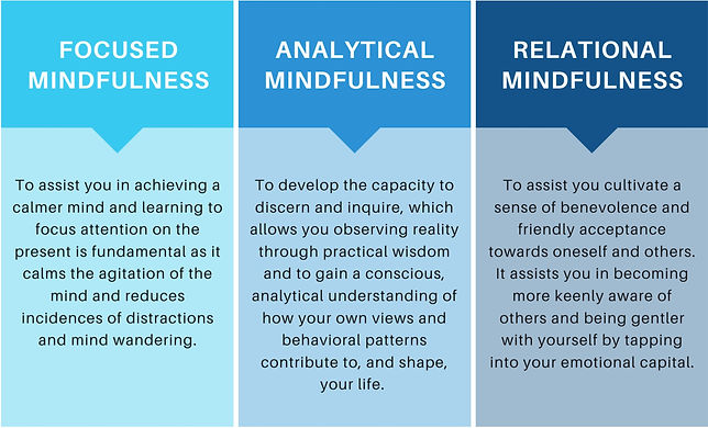 Methodology_Resilience_through_Mindfulnes_edited