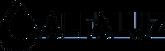 alfaluz logo BLACK.png