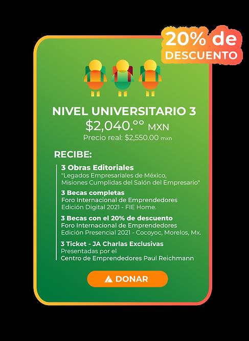 Nivel Universitario 3