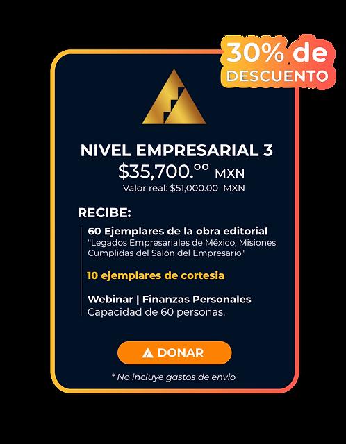 Nivel empresarial 3