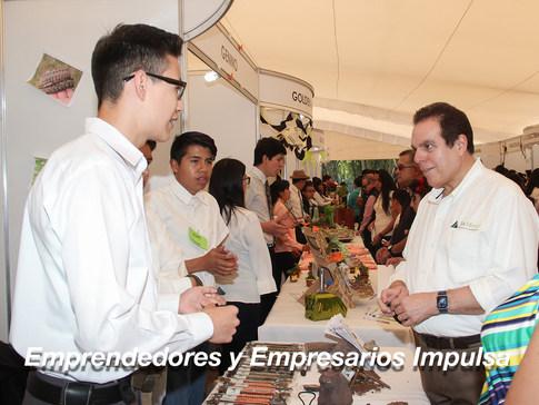 Emprendedores y Empresarios IMPULSA