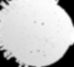bola blanca opacidad.png