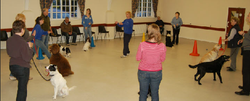 group training 3