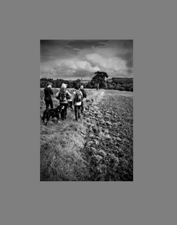 Black and white group walk2