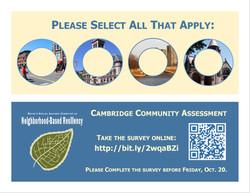 Cambridge Community Assessment