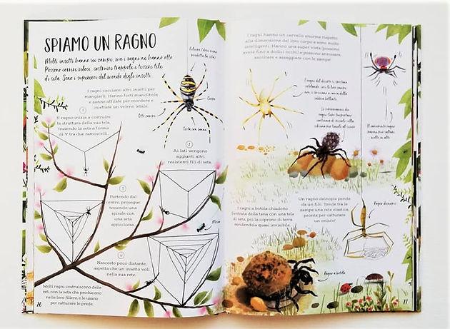 6099d8162674 Il mio primo libro sulla natura è un meraviglioso manuale super colorato  per imparare tutte le bellezze della natura.