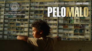 Banner_Pelo_Malo.png