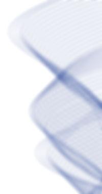 linhas fundo 2.jpg