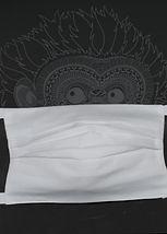 mondmasker model 3.JPG