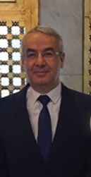 Ayman Mohamed Shawky
