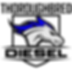 Transparent Badge Logo.png