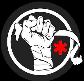 logo medhybride2.png