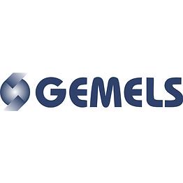GEMELS.png