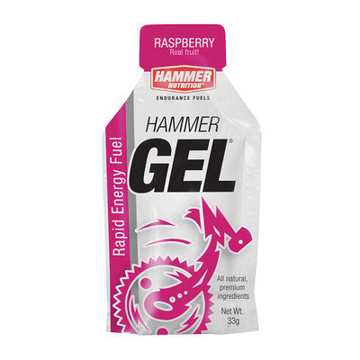 Hammer Gel 24pk