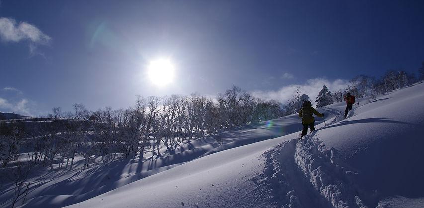 Backcountry Gear Renal, Beacon Rental,Avalanhe Gear Rental, Snow Shoes Rental