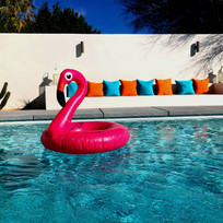 Flamingo Floatie in Pool.jpg