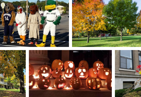 Fall fun in Watertown!