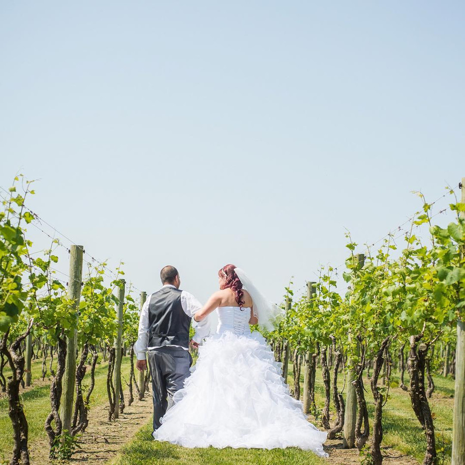 Wedding_vineyard_dress_sun_teal_maryland