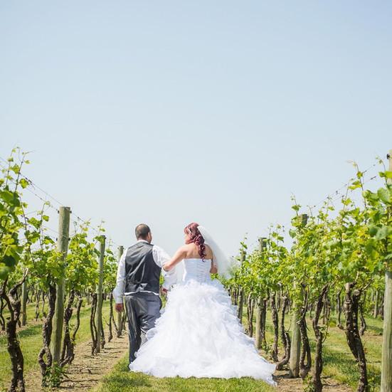 Wedding_vineyard_dress_sun_teal_maryland