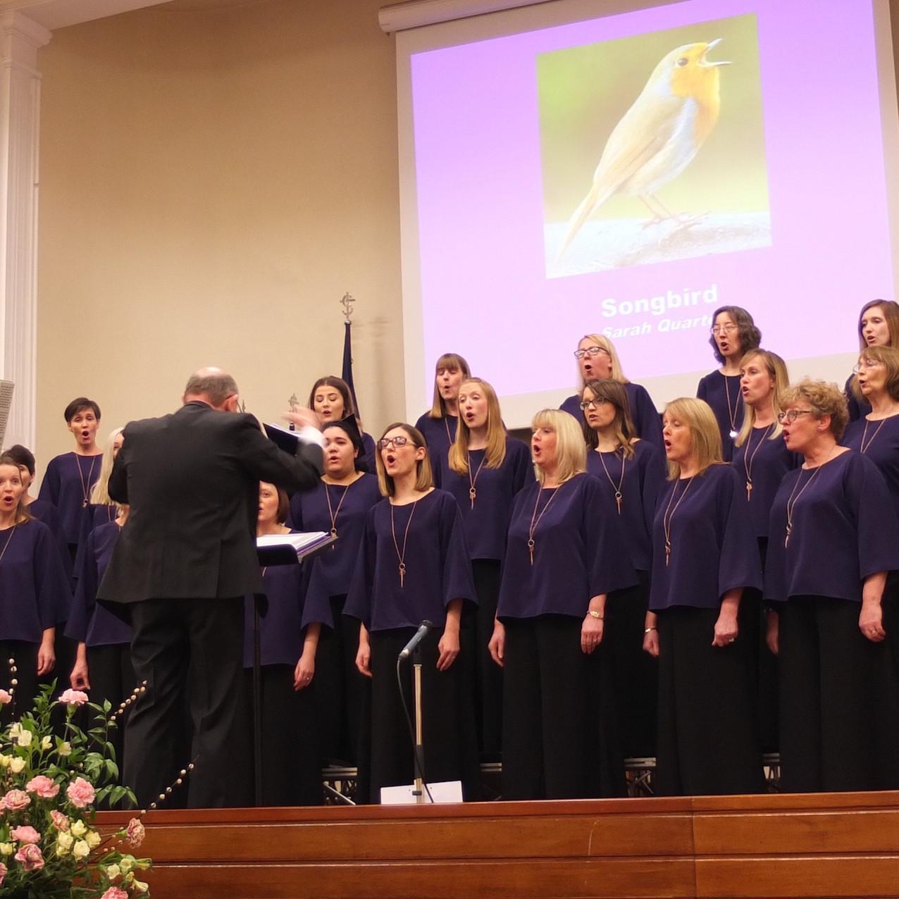 Belcanto choir