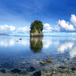 Visiting the National Park of American Samoa: The Ultimate How-To Guide