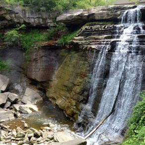 Suburban National Park Paradise