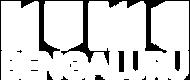 numa logo whiteArtboard 1 copy 4.png