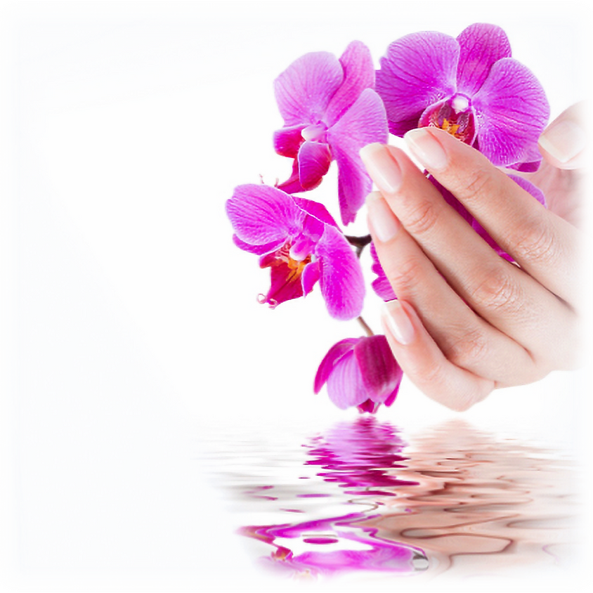 IMA, niv. I - Initiation au Massage Biodynamique