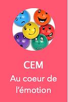CEM.png