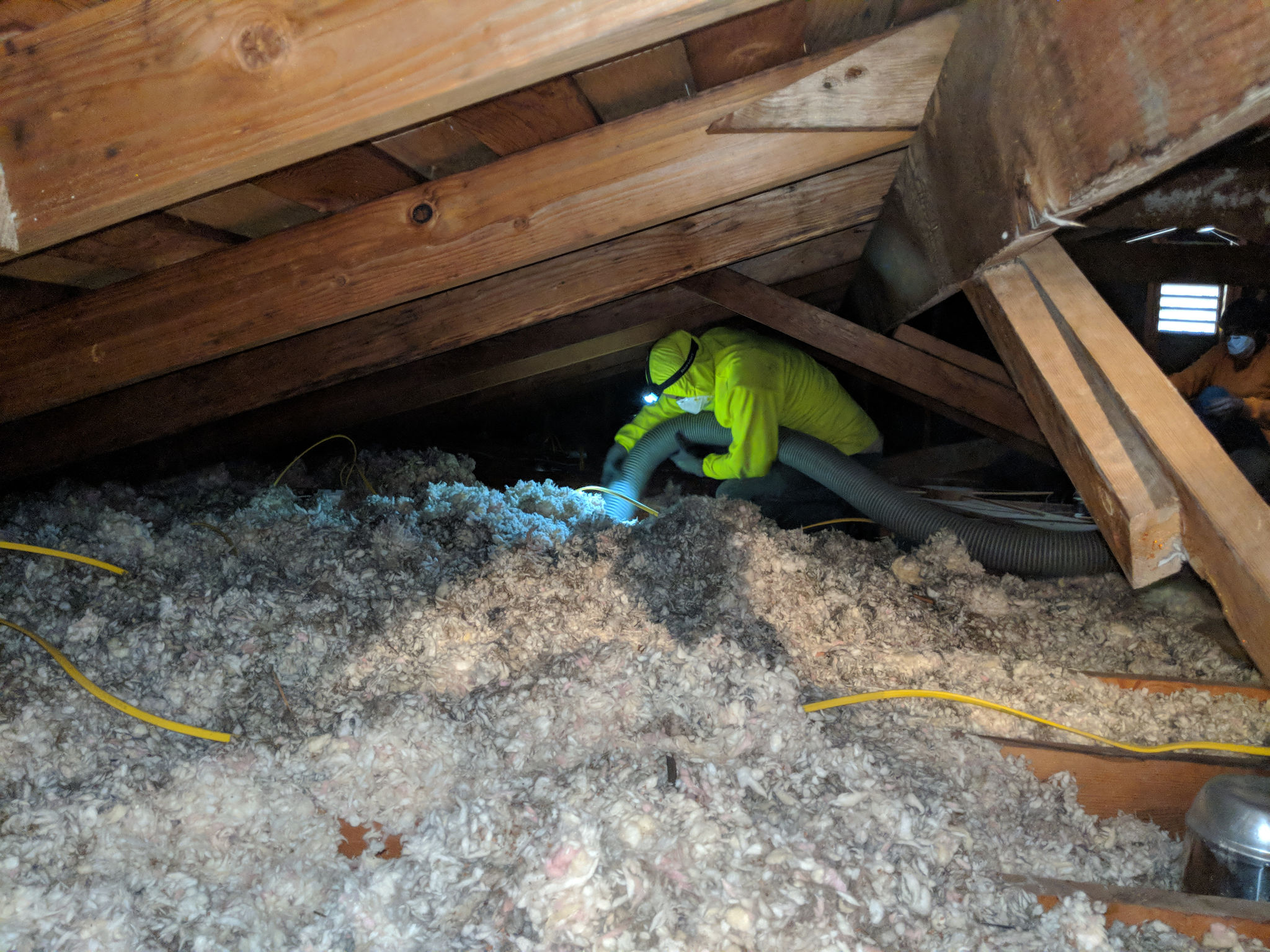 Tips for attic insulation removal by attic insulation labs attic attic cleaning attic cleaning attic insulation removal solutioingenieria Image collections