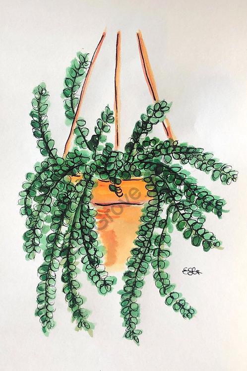 Watercolour Donkey Tail Print