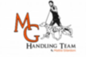 logo mg handling team