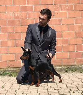 KING PARALLE UNIVERSE DU DMON DOG
